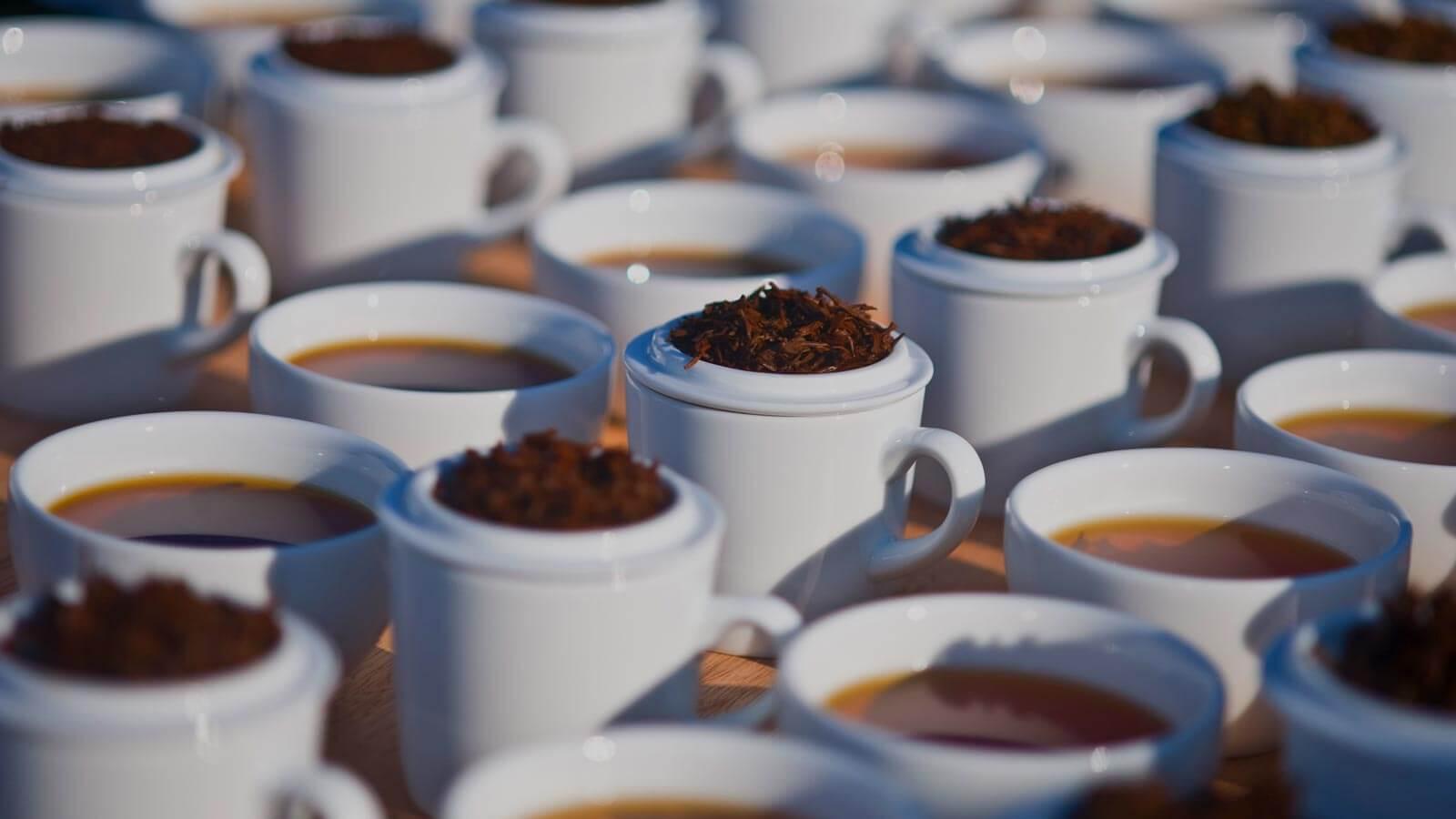 Premium quality Ceylon Tea by MJF Exports