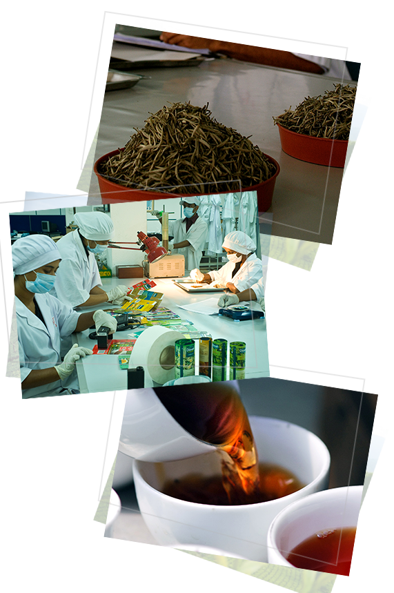The quality control process of MJF Exports