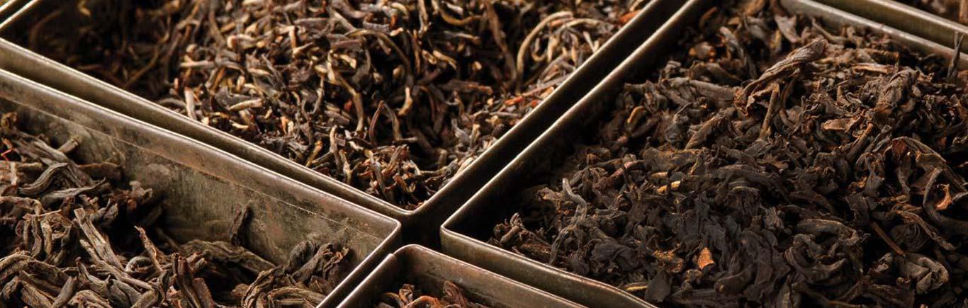Order Ceylon tea in bulk or private label tea