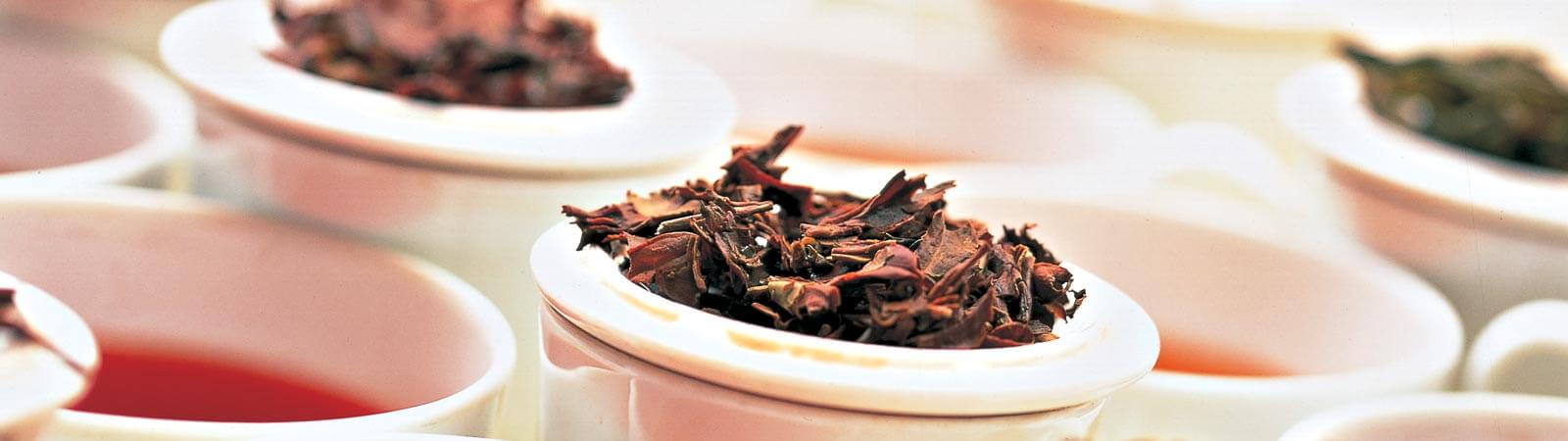 Superior quality Ceylon tea to blenders and packers worldwide