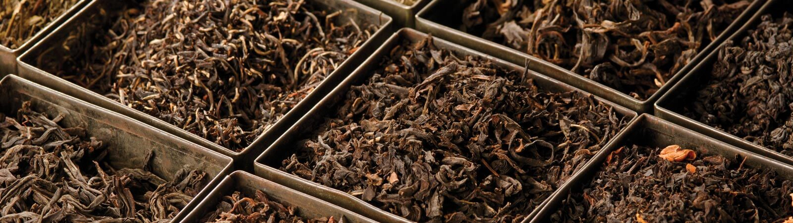 Black tea, green tea, white tea, oolong tea and infusions by MJF Exports