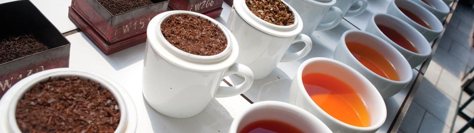 Superior quality Ceylon tea by MJF Exports